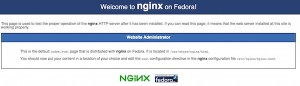 nginx Startseite